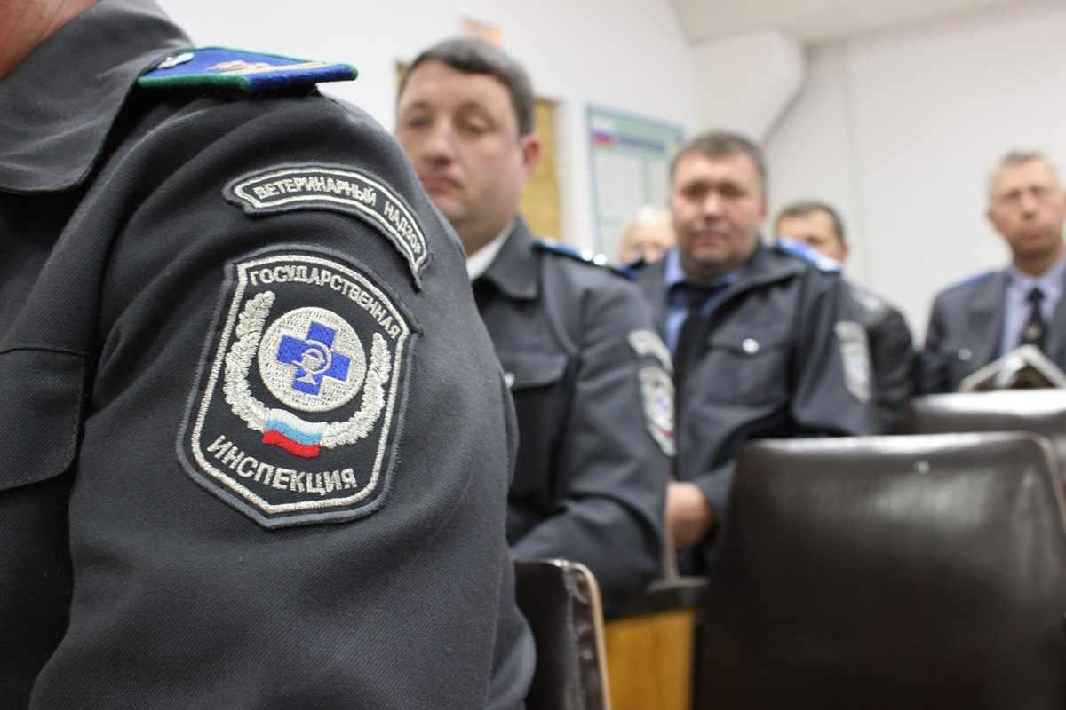 Инспектор государственного надзора и контроля – официальная должность, которую отличают высокие полномочия проверять, как соблюдаются законы на местах и в каждом конкретном случае