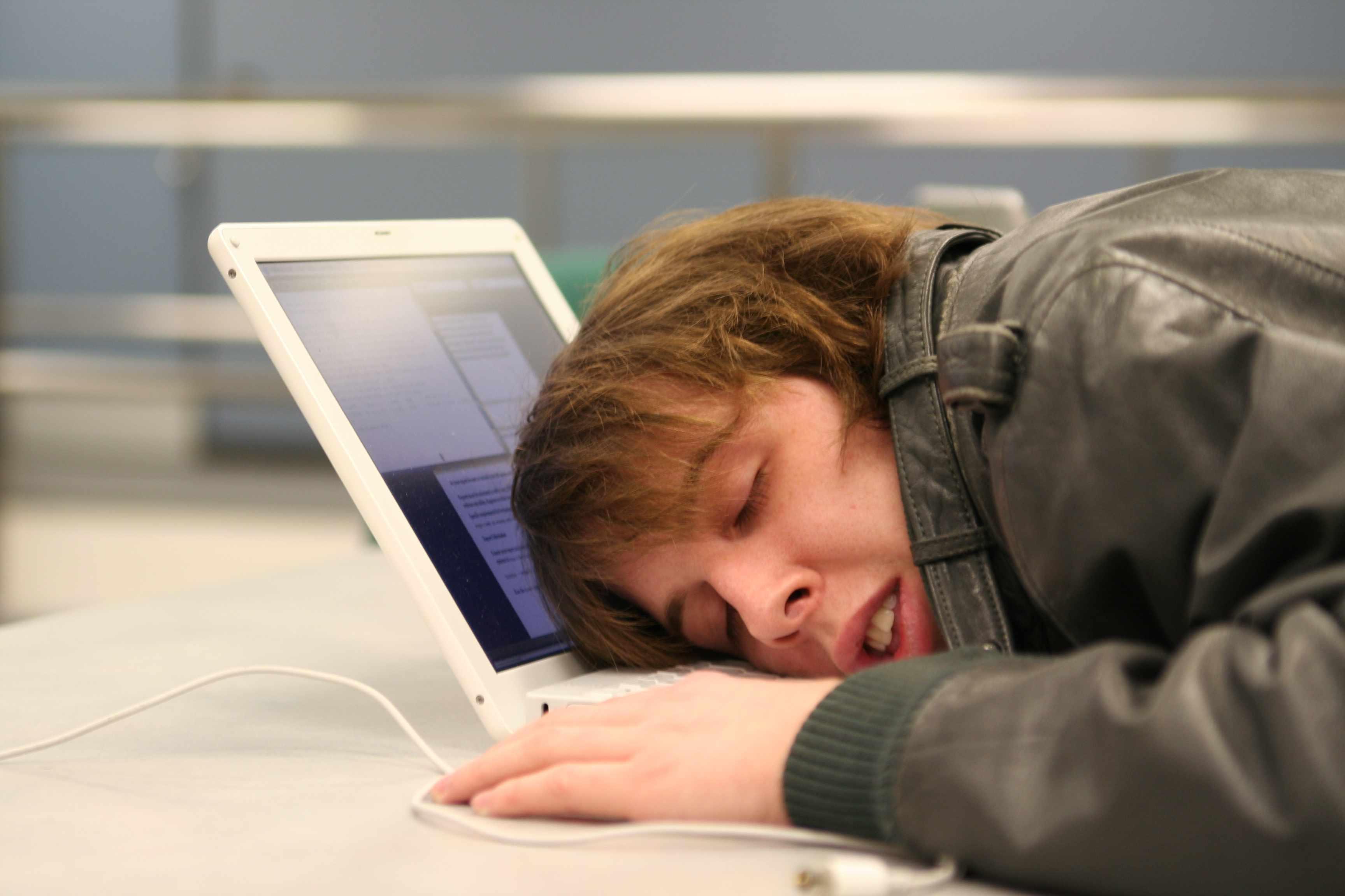 Спит возле компьютера