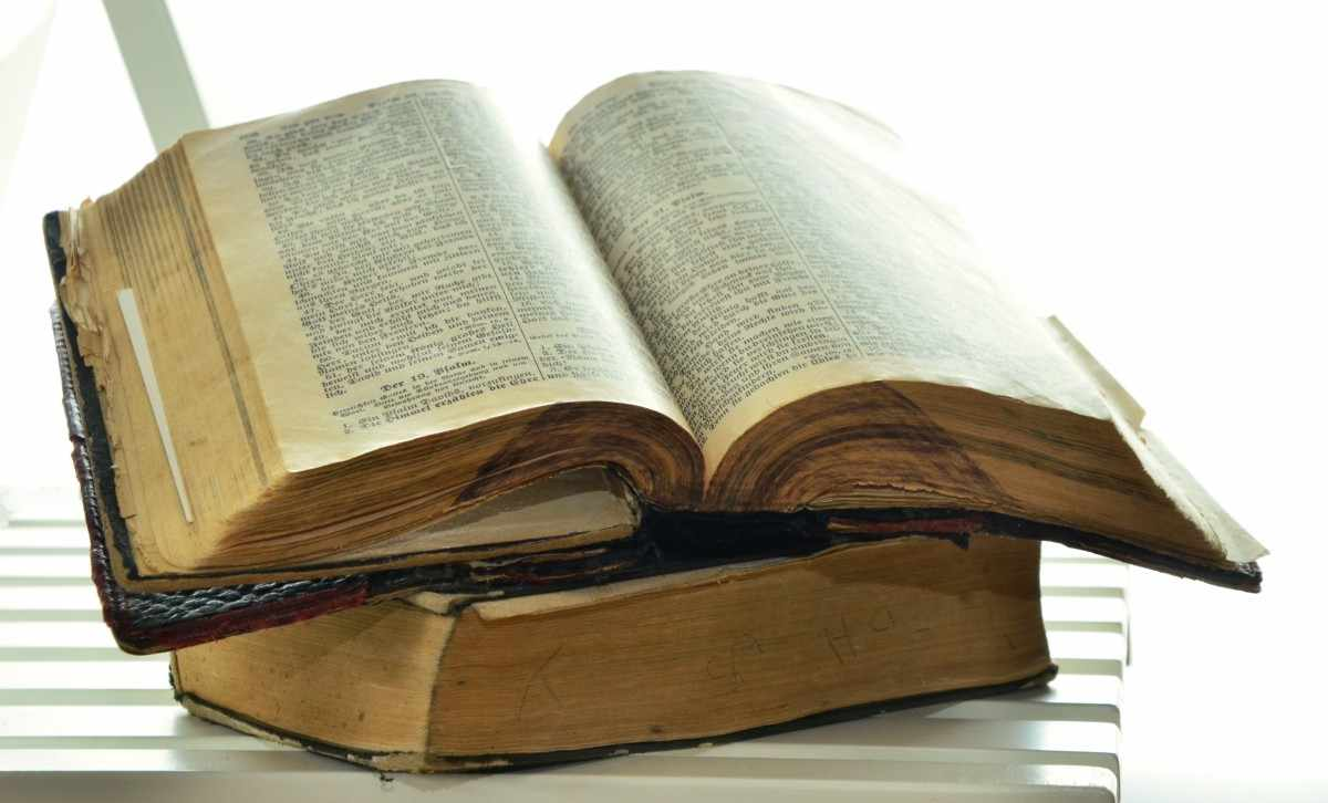 Библиовед